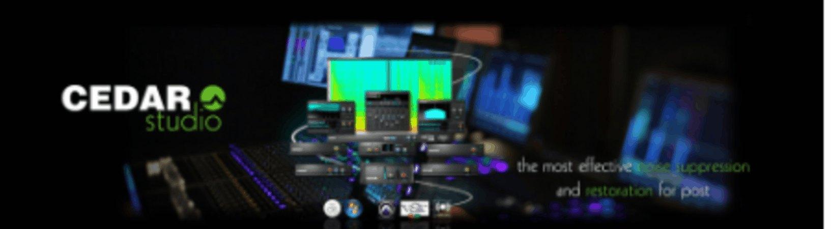 Cedar Studio 9 DNS